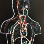 human body diagram