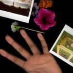 hand photo with pictures surrounding it and flowers